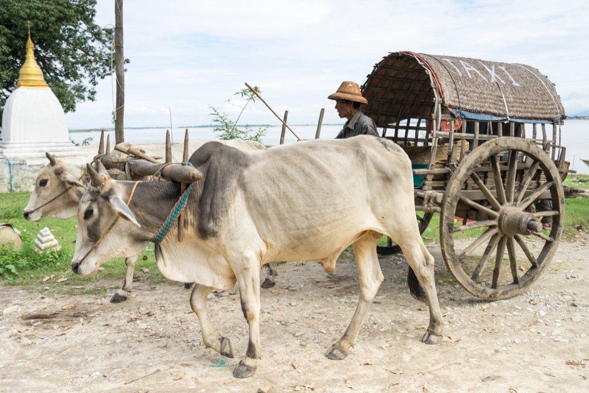 A Burmese taxi