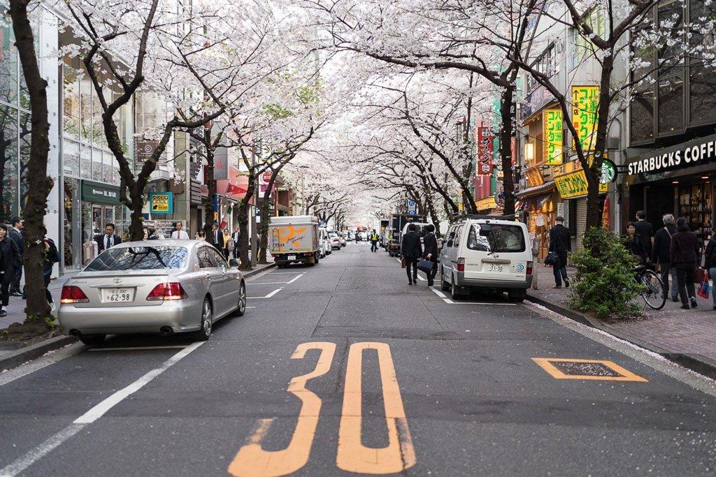The area around Tokyo Station