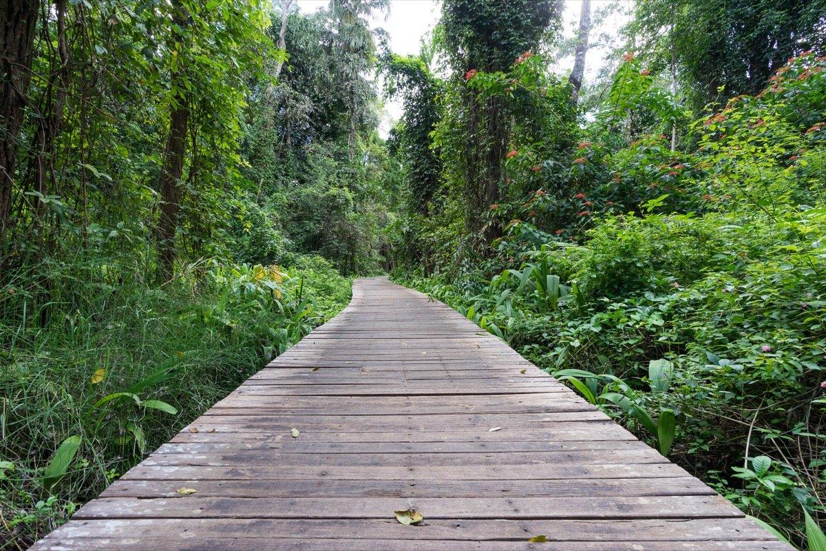 Botanical Gardens in Pyin Oo Lwin