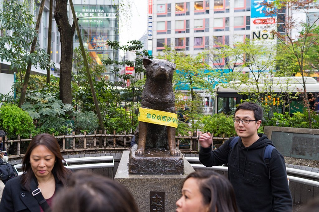 Hachikō statue by Shibuya Crossing